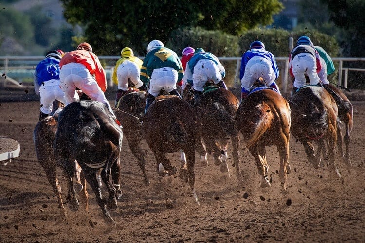 A horse race and their jockies