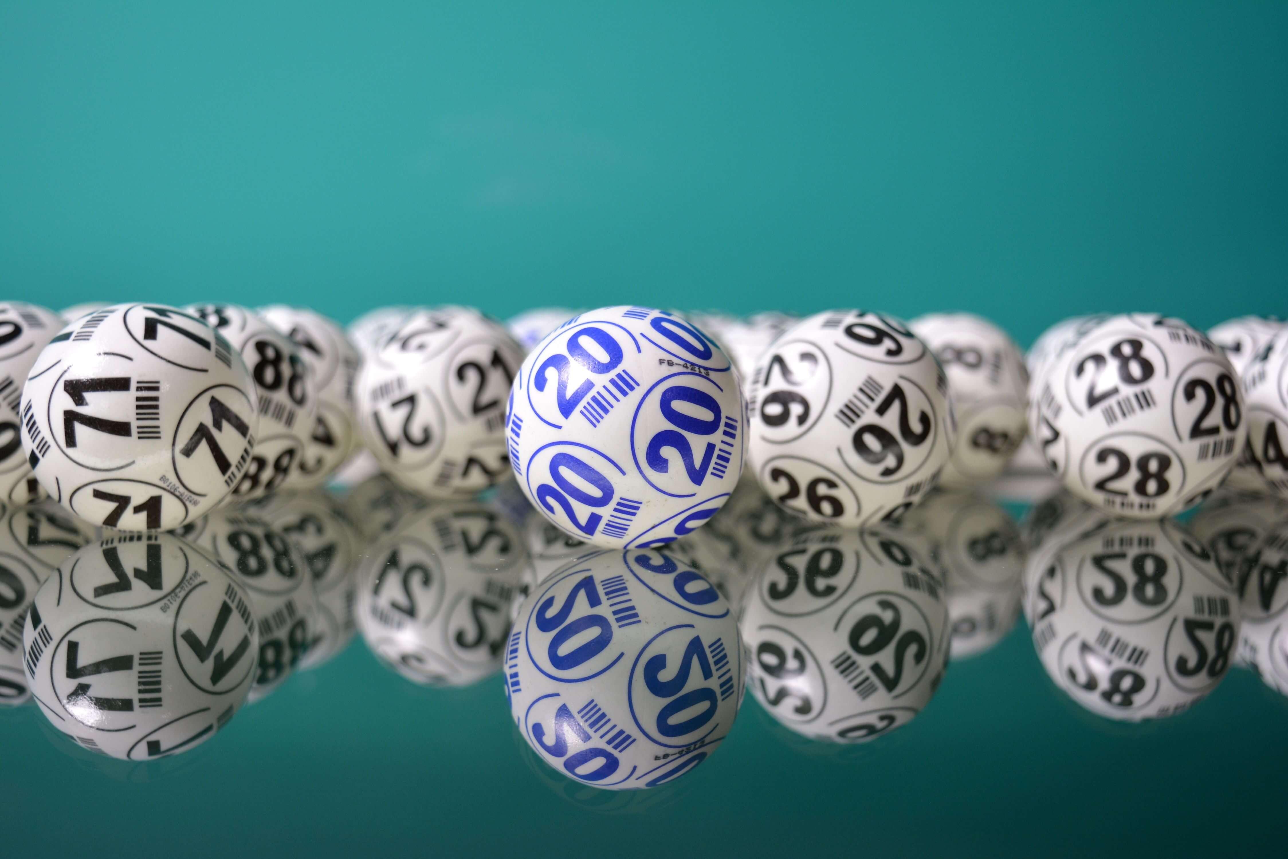 5 Bingo Tips you Must Read